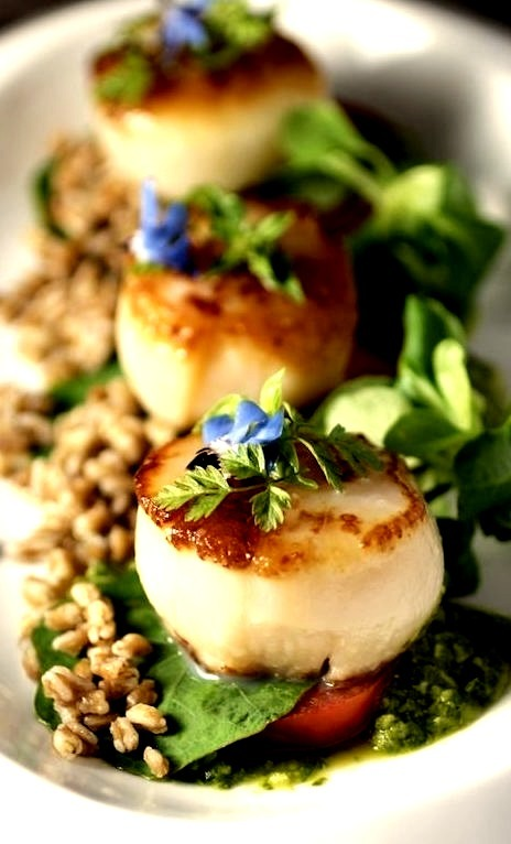 Scallops, Farro & Micro Greens with Lemon Basil Sauce (Source
